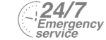 24/7 Emergency Service Pest Control in Richmond Hill, Richmond Park, TW10. Call Now! 020 8166 9746