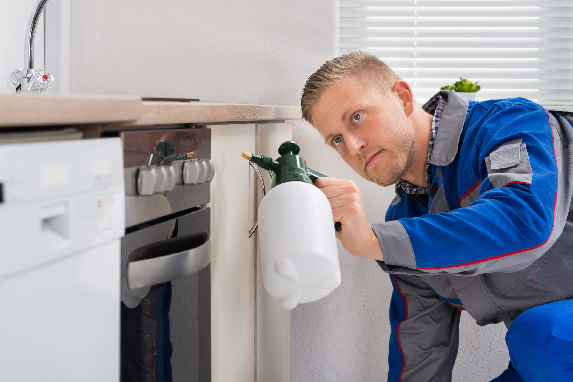 Pest Inspection, Pest Control in Richmond Hill, Richmond Park, TW10. Call Now 020 8166 9746